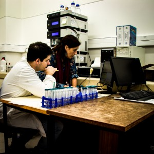 Two researchers working